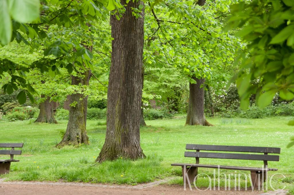 Park in Hannoversch Münden