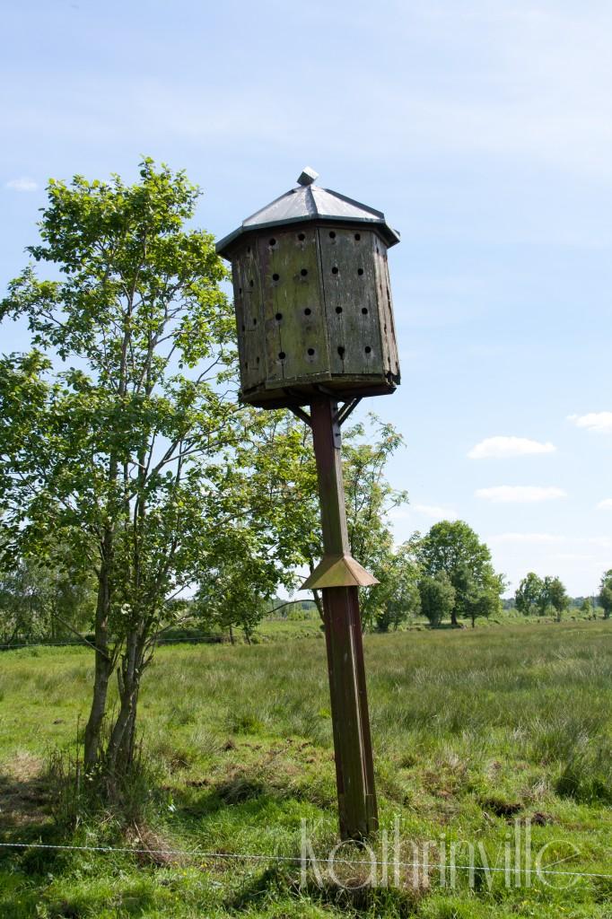 schiefer Turm im Moor in Freistatt